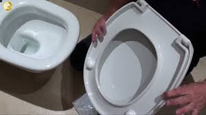 another home maintenance is changing toilet seats